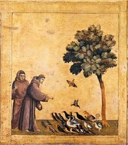 Giotto, panneau de prédelle — Saint François parle aux oiseaux