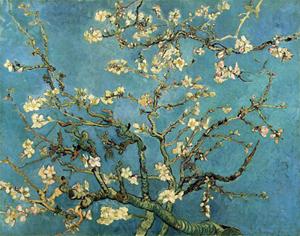 Vincent Van Gogh, Amandier en fleurs, 1890