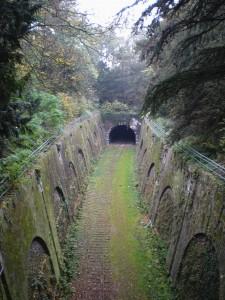 Fig. 10. Parc Montsouris, tranchée du chemin de fer de ceinture, 2011, Cliché de l'auteur.
