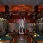 Musée Testut Latarjet d'anatomie