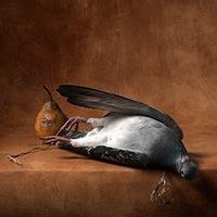 Nature morte photographique (d'après Jean-Siméon Chardin)