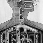 fritz-kahn-respiratory_lg