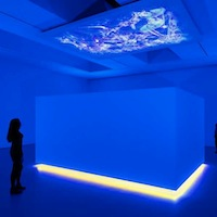 Diana Thater, Installation Science-fiction, 2011, New York
