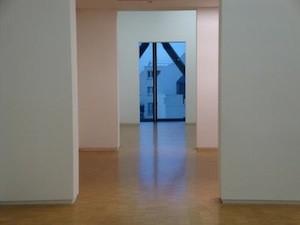 """""""Vides"""". Une rétrospective, Paris, Centre Georges Pompidou, 2009"""